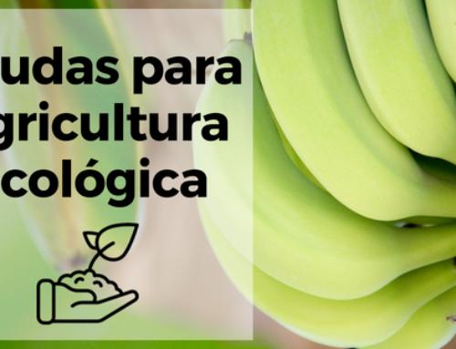 Ayudas para Agricultura Ecológica