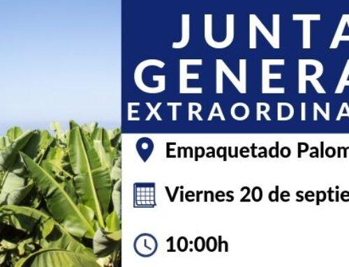 Junta General Extraordinaria