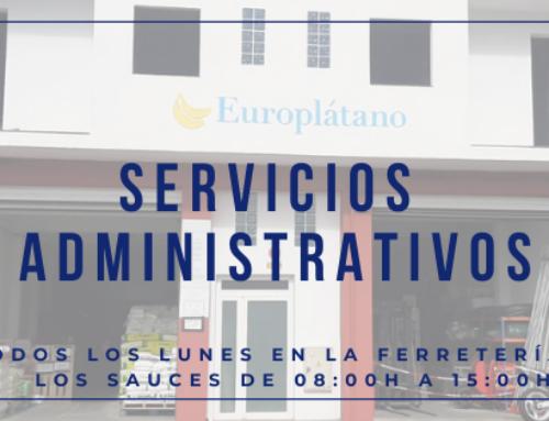 Servicios administrativos Los Sauces, La Palma