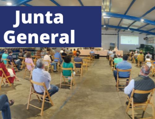 Junta General