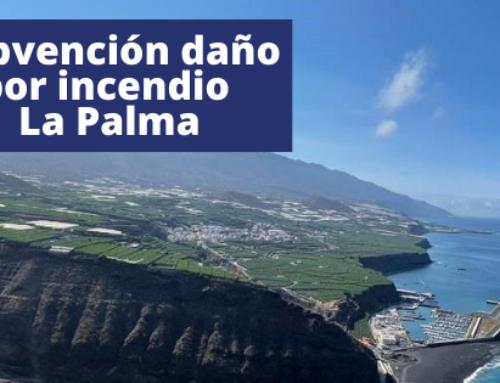 Subvención daño por incendio La Palma