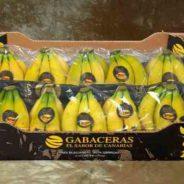 Las Gabaceras